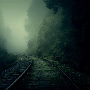 Many Track Minds Foto artis