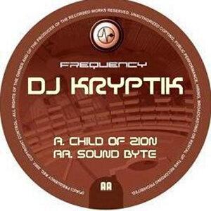 DJ Kryptik Foto artis