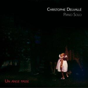 Christophe Delvallé Foto artis