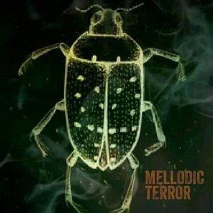 Mellodic Terror Foto artis