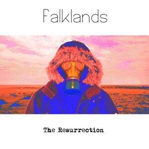Falklands Foto artis