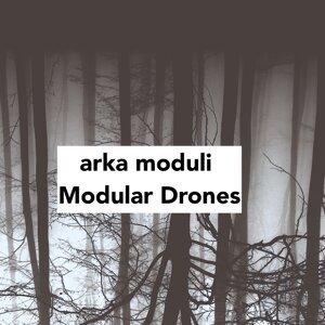 Arka Moduli Foto artis