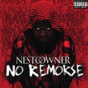 Nesto the Owner Foto artis
