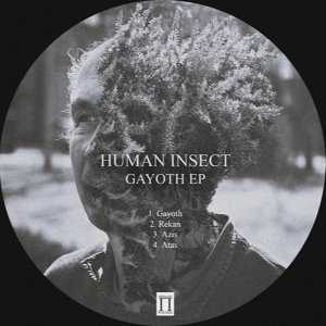 Human Insect Foto artis