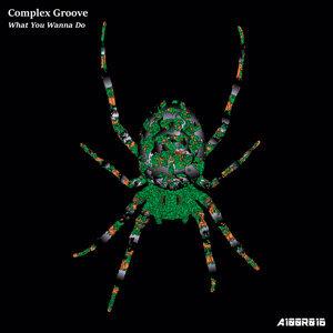 Complex Groove Foto artis