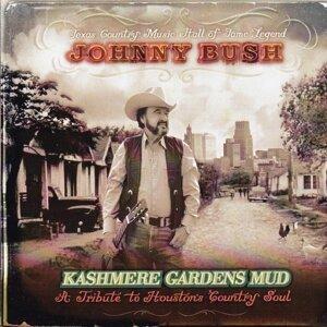 Johnny Bush 歌手頭像