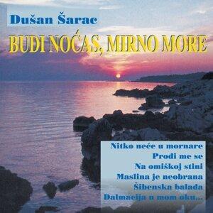 Dušan Šarac Foto artis