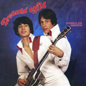 Donnie & Joe Emerson 歌手頭像