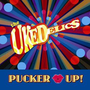 The Ukedelics Foto artis
