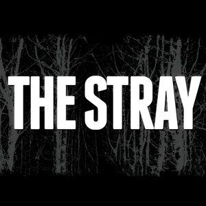 The Stray Foto artis