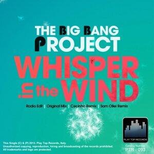 The Big Bang Project Foto artis