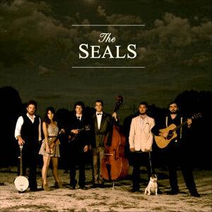 The Seals Foto artis