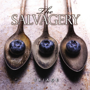 The Salvagery Foto artis
