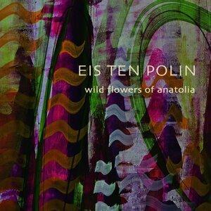 Eis Ten Polin Foto artis