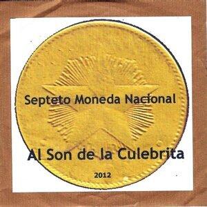 Moneda Nacional Foto artis