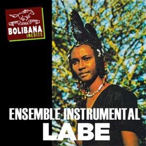 Ensemble Instrumental Labe Foto artis