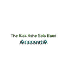 The Rick Ashe Solo Band Foto artis