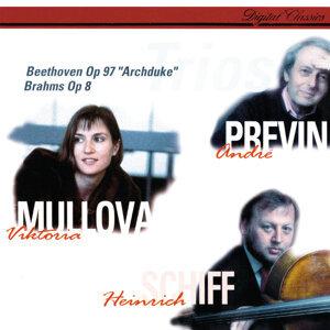Viktoria Mullova, Heinrich Schiff, André Previn Foto artis