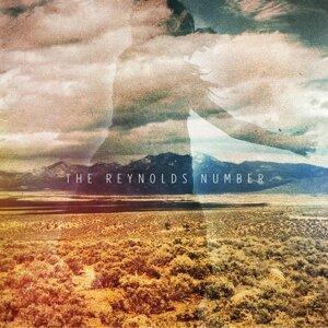 The Reynolds Number Foto artis