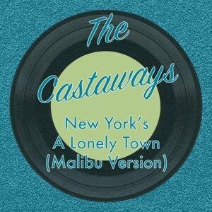 The Castaways 歌手頭像