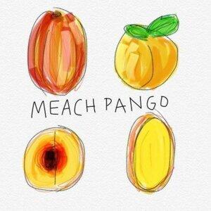 Meach Pango Foto artis