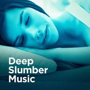 Relax Meditate Sleep, Easy Sleep Music, Sleepy Night Music Foto artis