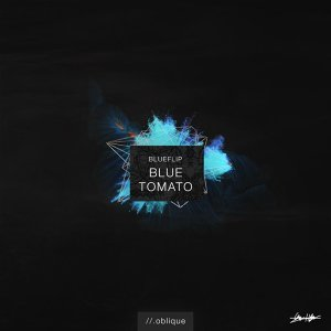 Blueflip Foto artis