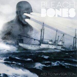 Bleach Bones Foto artis
