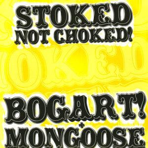 Bogart!/Mongoose Foto artis