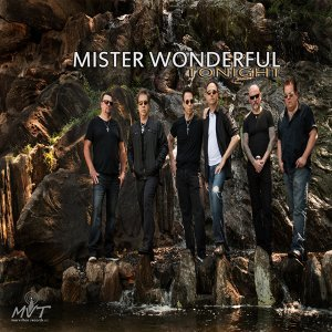 Mister Wonderful Foto artis
