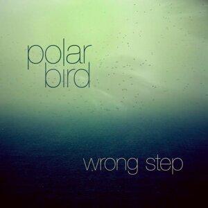 Polar Bird Foto artis