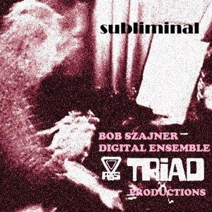 Bob Szajner Digital Ensemble Foto artis