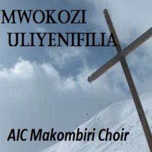 AIC Makombiri Choir Foto artis
