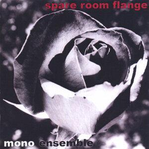 Mono Ensemble Foto artis
