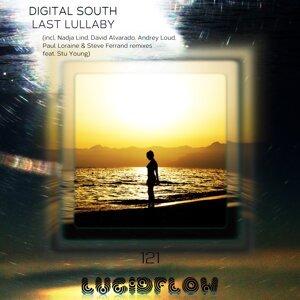 Digital South Foto artis