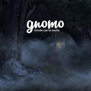 Gnomo Foto artis