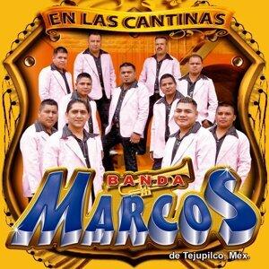 Banda Marcos de Tejupilco México Foto artis