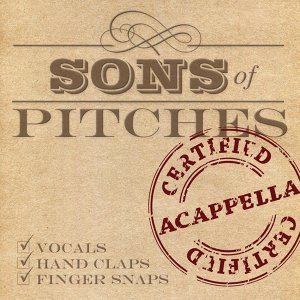 Sons of Pitches Foto artis