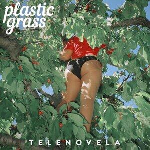 Plastic Grass Foto artis