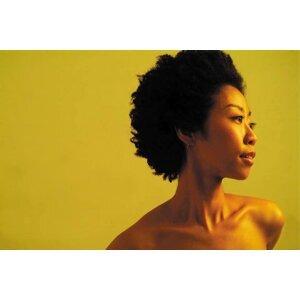Shinji Nakamura (中村 新史) Foto artis