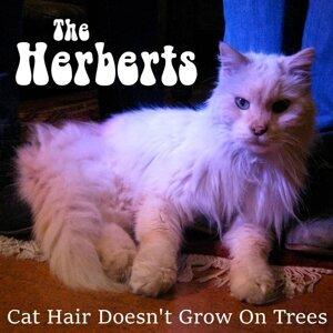 The Herberts Foto artis