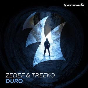 Zedef, Treeko Foto artis