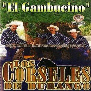 Los Corseles De Durango Foto artis