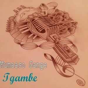 Tgambe Foto artis