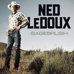Ned LeDoux