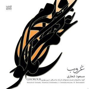 Masoud Shaari, Hamsaz Ensemble Foto artis