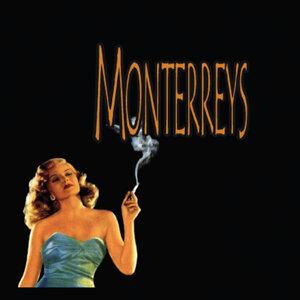 Monterreys Foto artis