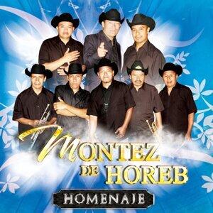 Montez de Horeb Foto artis