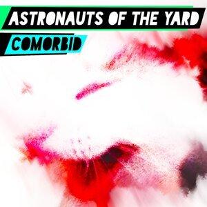 Astronauts of the Yard Foto artis