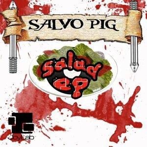 Salvo Pig DJ Foto artis